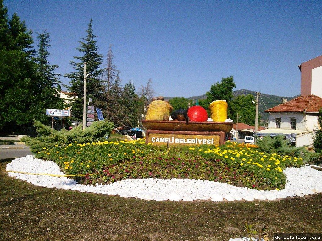 Çameli Fotoğrafı